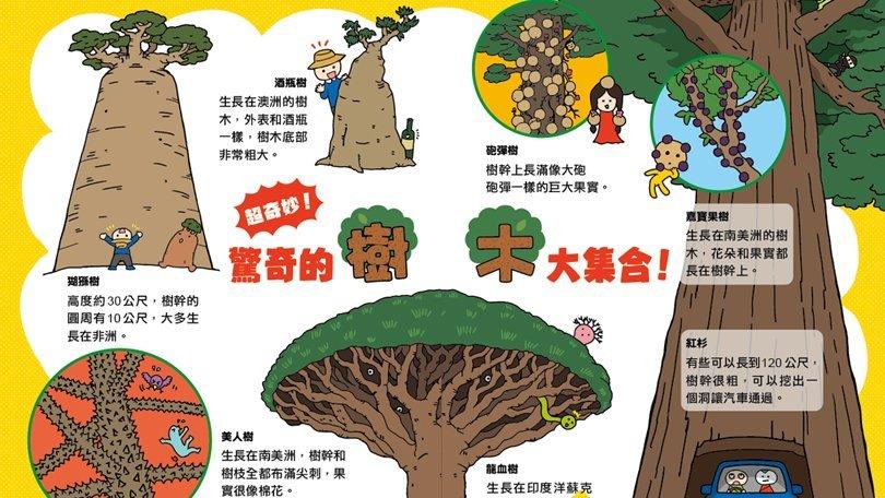 【圖解科學大驚奇】樹可以活幾年呢?