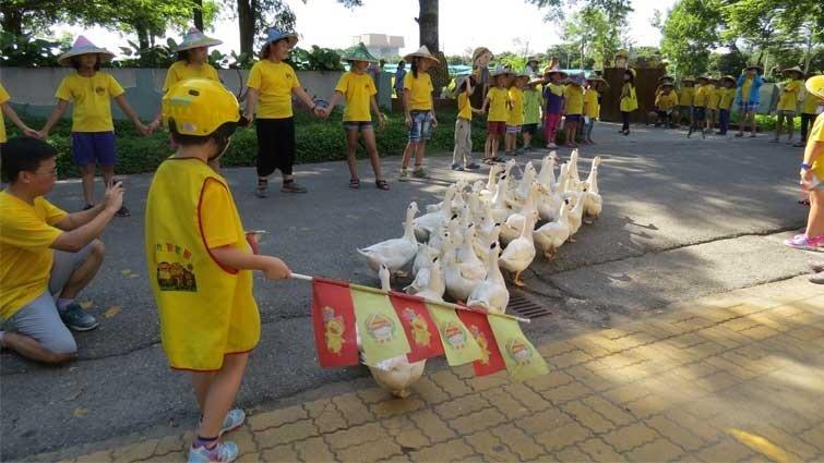 【食農教育】孩子自營學校農場的綜合能力課