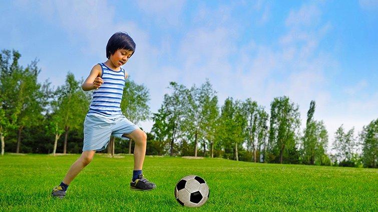 瘋世足!專業教練帶你看懂足球比賽規則
