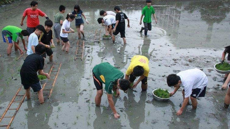 新竹市矽谷中小學國中部:藝術園區讓孩子適性發展
