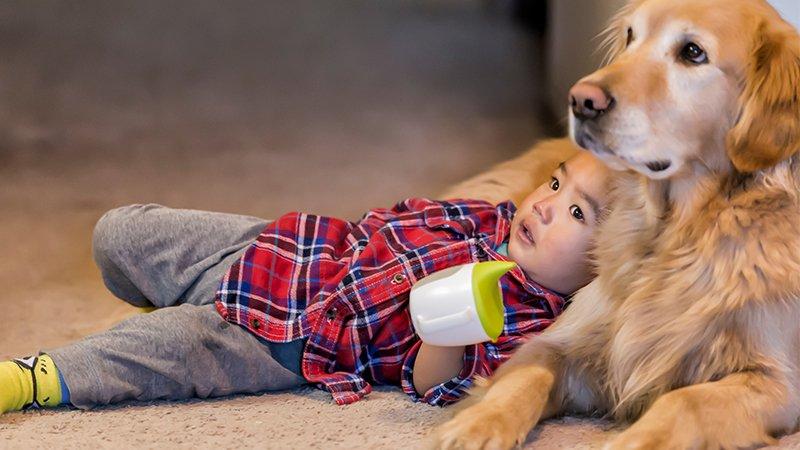 老狗教會孩子的事