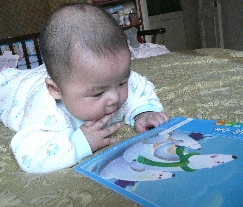 不到半歲的孩子正津津有味地看書。