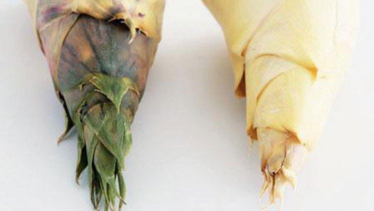 當季竹筍怎麼選、怎麼料理、怎麼滷?