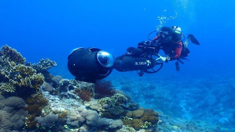 Google街景服務首度潛進台灣海底世界