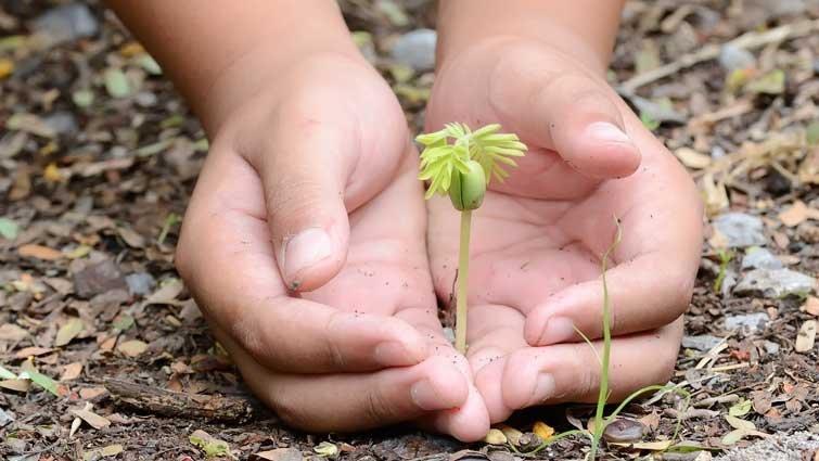 做中學懂分享 光復友善食農培育小達人