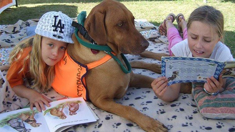 毛小孩也可以是幫助孩子重拾閱讀信心的好夥伴!