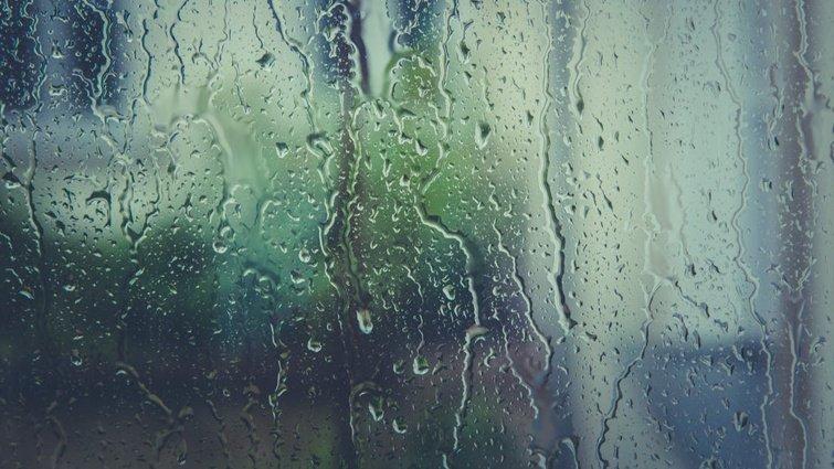 利用颱風的豪雨,可省去打掃?