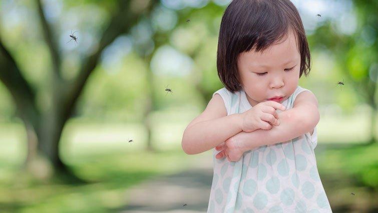 黃瑽寧:為什麼被蚊子叮咬會腫一個包?