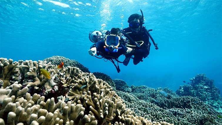 來去沖繩 3歲也能玩潛水