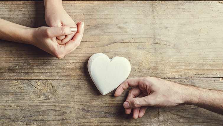 愛情與婚姻是個謎?還是可預測?小雨麻讀《婚姻的幸福科學》