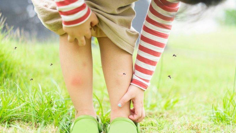 黃瑽寧:蚊子咬完腫一大包:血管性水腫