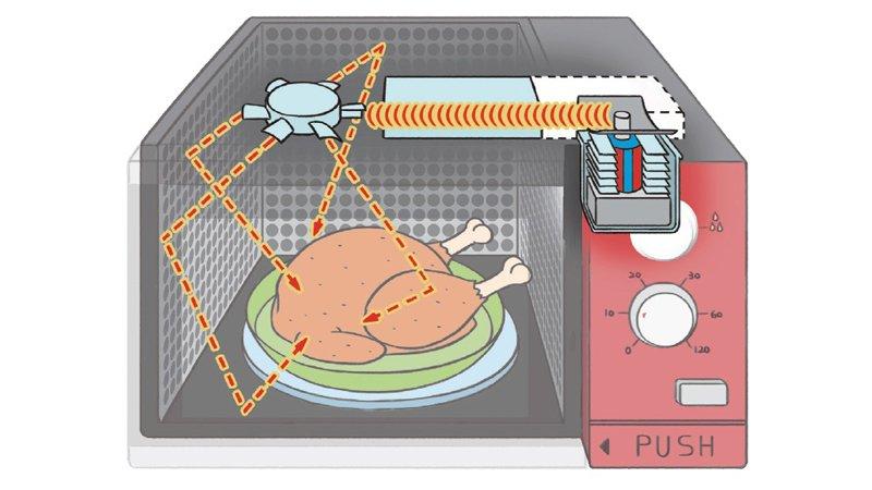 【給父母的科普知識私藏包】微波爐怎麼煮熟食物?