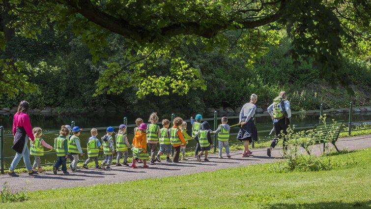 美國學前教育新趨勢,崇尚自然「戶外幼兒園」6年增5倍