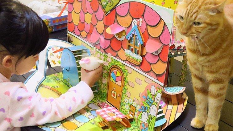 職能治療師黃彥鈞:扮家家酒,是建立生活常規的遊戲