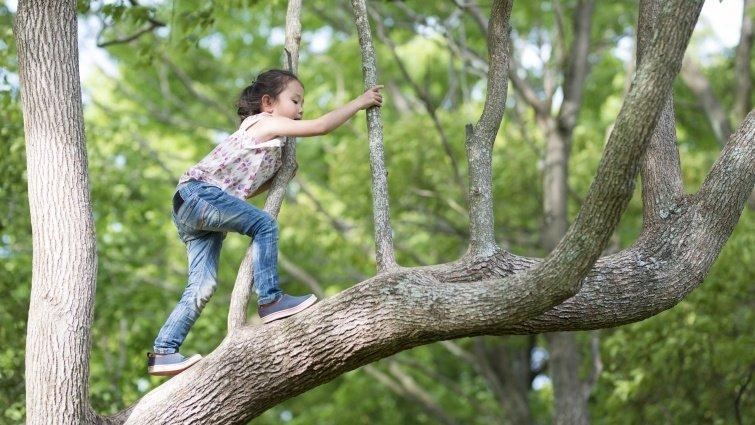 野外安全,大自然教我們的事