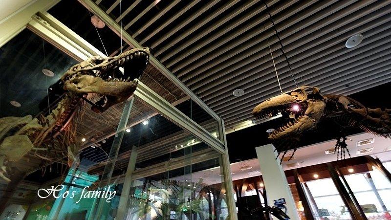 【台南景點】南臺灣最具規模自然史博物館!樹谷生活科學館:3D恐龍、長毛象就在眼前