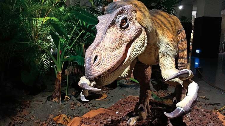 活動快報/小心!恐龍就在你身邊