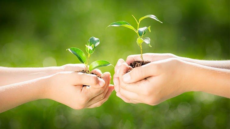 大自然裡的生命教育:認識河馬教授,一起讚嘆自然