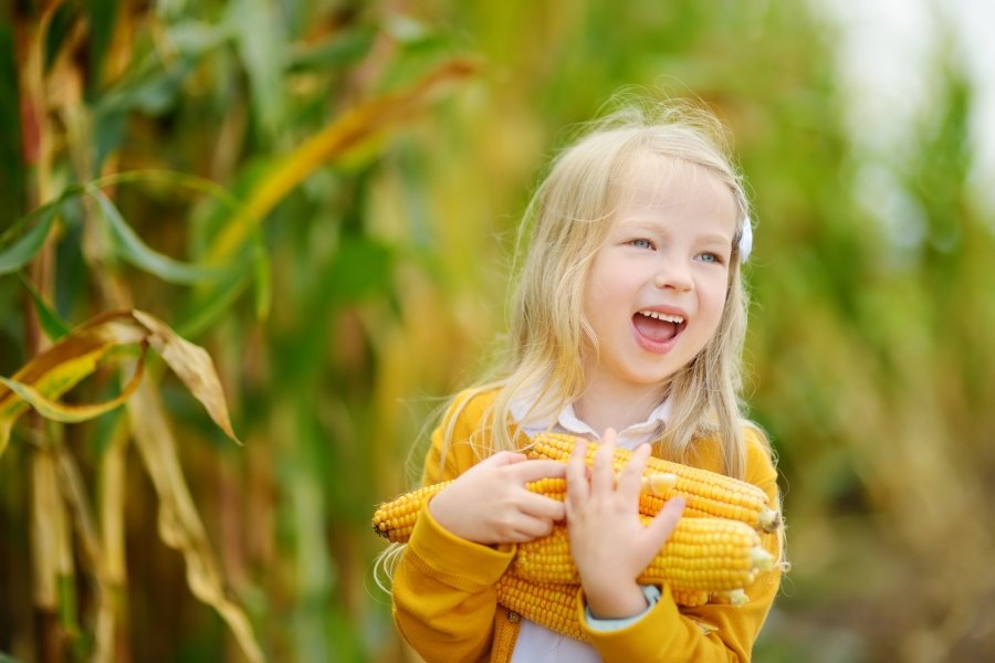 支持友善栽種、理解食材  大人小孩一起從飲食愛地球