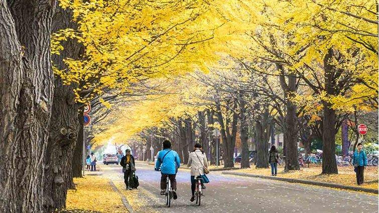 放棄以考試為終點,才是學習的起點──留學日本後我明白台灣教育弱在哪
