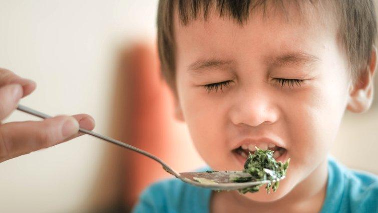 黃瑽寧:面對偏挑食兒童的解方