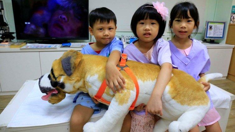 小小獸醫體驗:從動物開始尊重每個生命-【小小職人體驗全搜集】