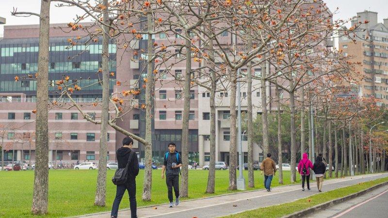 神救援!準留學生因疫情卡關出不去,台灣頂大設短期學院供就讀